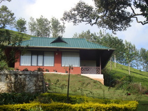 Munnar Private Honeymoon Cottage