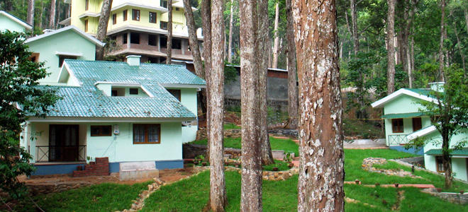 Forest Jungle Cottage at Munnar