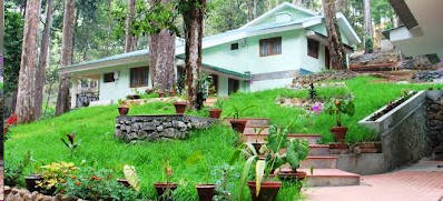 Forest Cottage in Munnar