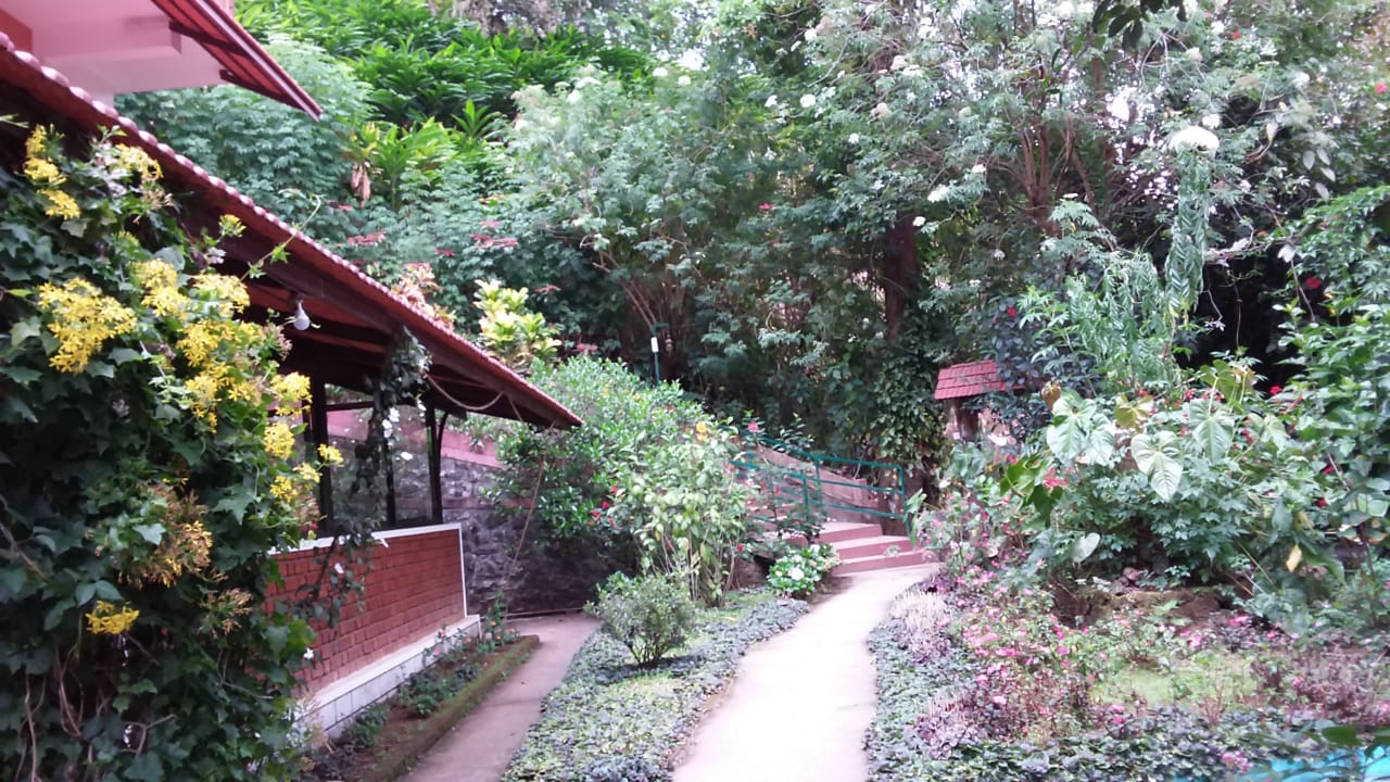 Munnar Luxury Ollivebrook Bungalow